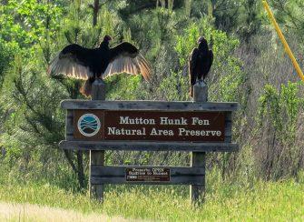Muttonhunk Sign